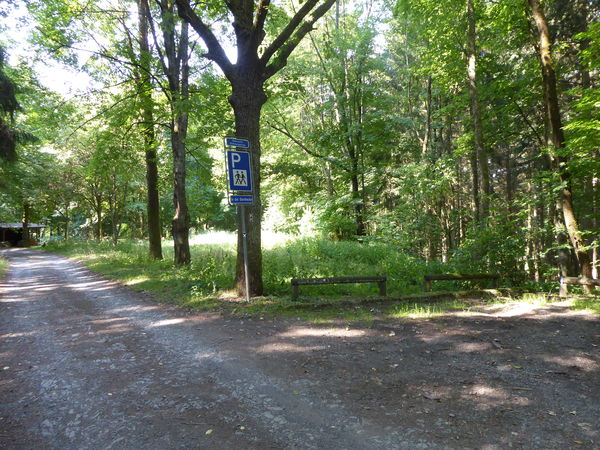Parkplatz mitten im Wald - in der Dornhecke.