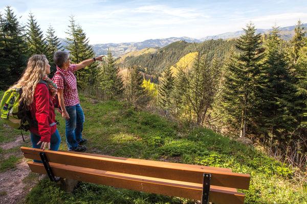 Genusswandern auf dem Peterstaler Schwarzwaldsteig