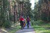 Radweg zwischen Storkow und Dahmsdorf, Foto: Katrin Riegel