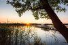 Scharmützelsee Steg, Foto: Seenland Oder-Spree/Florian Läufer