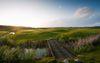 Golfplatz Faldo, Foto: A-ROSA Golfclub e.V.