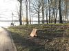 Fontanepark Bad Saarow mit Literaturpfad, Foto: Laura Beister