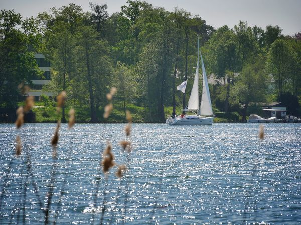 Segelboot auf dem Scharmützelsee, Foto: Seenland Oder-Spree/Angelika Laslo