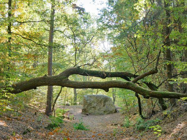 Rauener Steine, Foto: Angelika Laslo , Lizenz: Seenland Oder-Spree