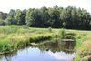 Moorwiesen, Foto: Bad Saarow Kur GmbH, Lizenz: Bad Saarow Kur GmbH