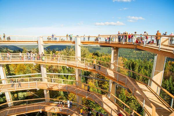 Vom 40 Meter hohen Aussichtsturm bietet sich ein Panoramablick über den gesamten Nordschwarzwald