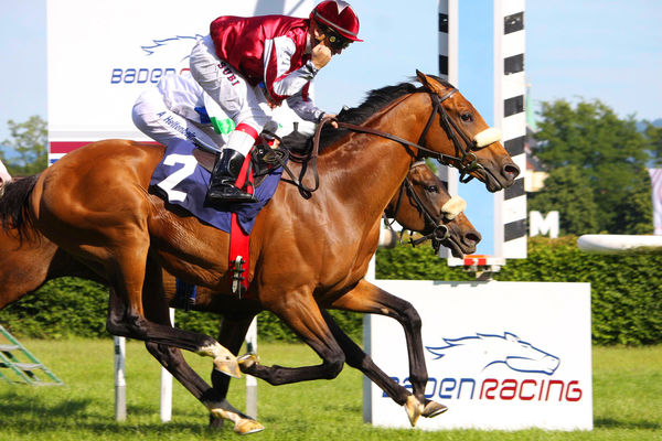 Baden Racing Galopprennbahn Iffezheim