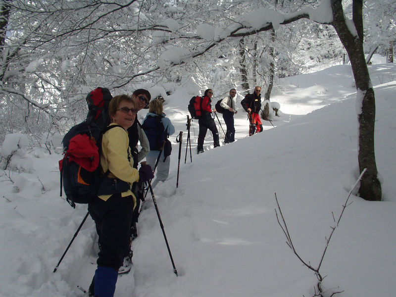 Snowshoeing in the northern and southern Black Forest