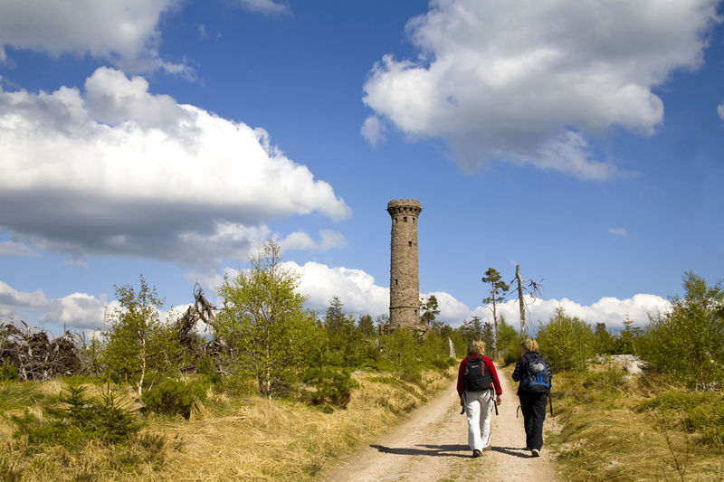 Badener Höhe - Circular trail