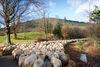 Schafherde auf dem Waldweg