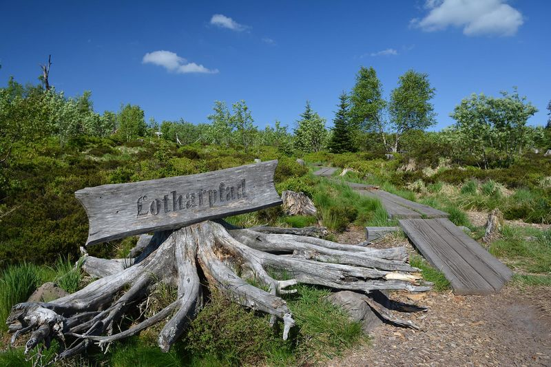 The Lothar trail