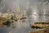 Buhlbachsee im Nebel