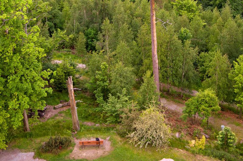 Naturlehrpfad - Nature trail