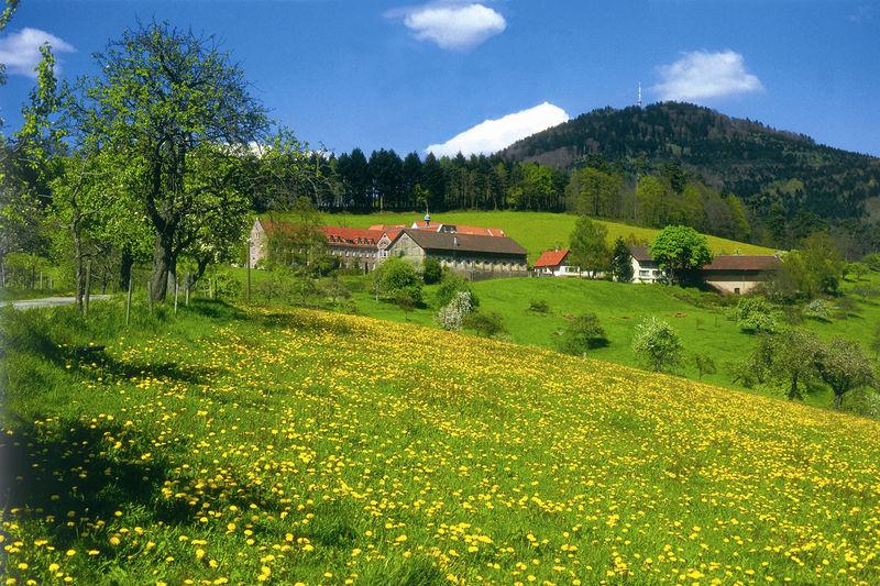 Panoramaweg Etappe 2 - Merkurbergbahn zum Forellenhof
