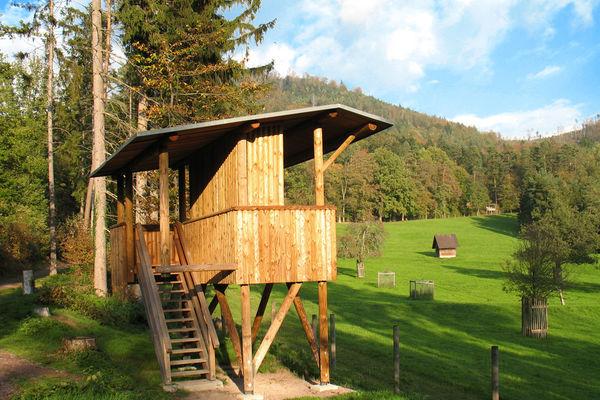Wildgehege Baden Baden