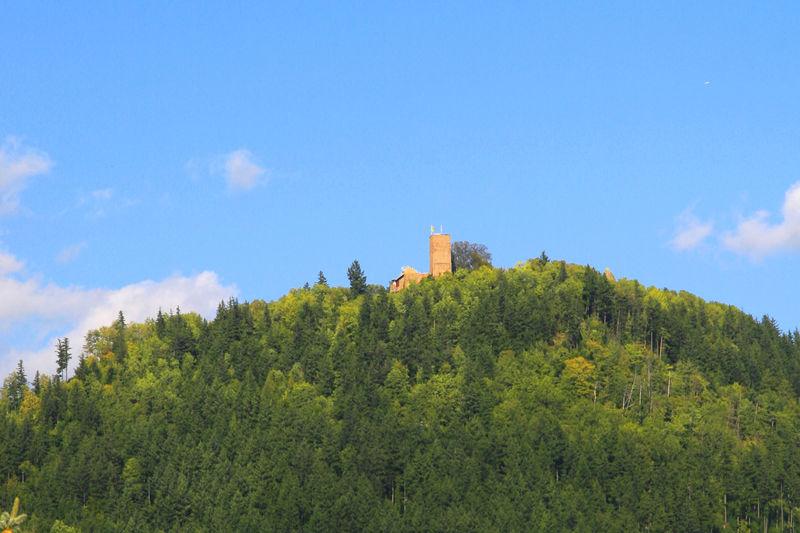 Yburg-Trail