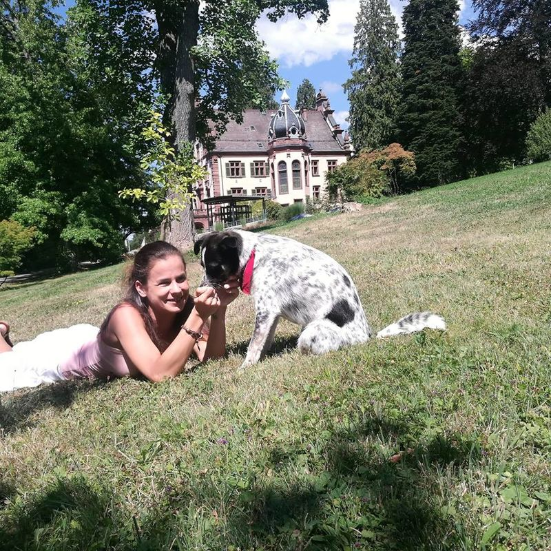Hundebetreuung für Ihren Urlaub