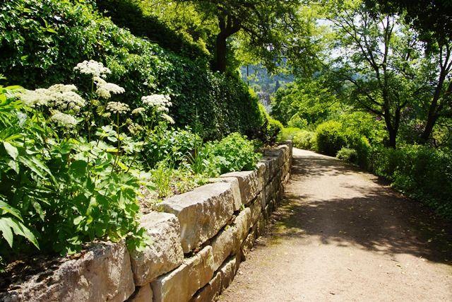 Staudenvielfalt im Hildegard von Bingen Garten