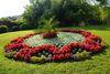 Blumenzauber im Kurpark
