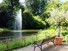 Schwanenweiher im Kurpark Badenweiler