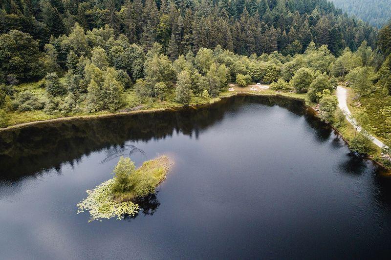 Der Sankenbachsee aus der Vogelperspektive
