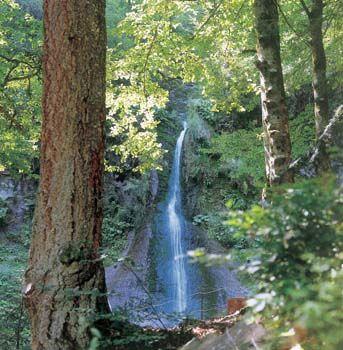 Der Sankenbachwasserfall stürzt 40 Meter in die Tiefe.