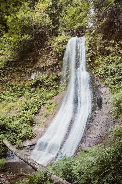 Der Sankenbachwasserfall stürzt in die Tiefe.