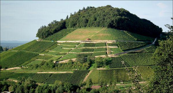 Der Castellberg