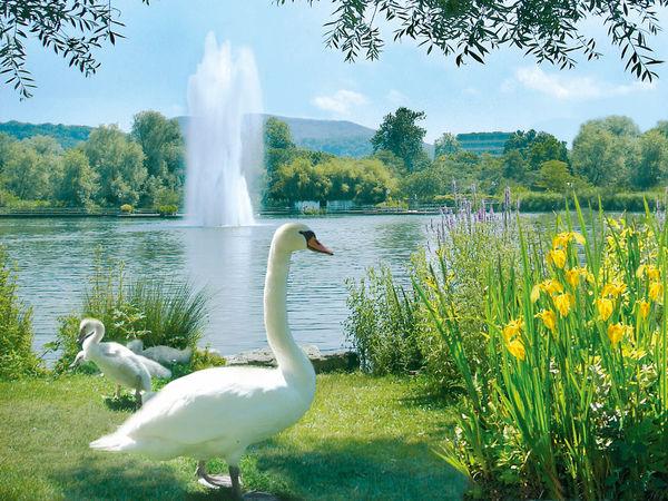 Relax Im Grünen: Parks & Gardens
