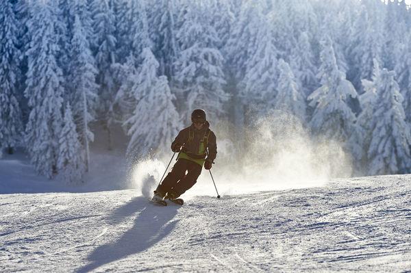 Skifreuden im Wintersportgebiet Großer Arber - Eck - Silberberg