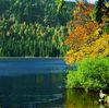 Herbststimmung am Großen Arbersee im Bayerischen Wald