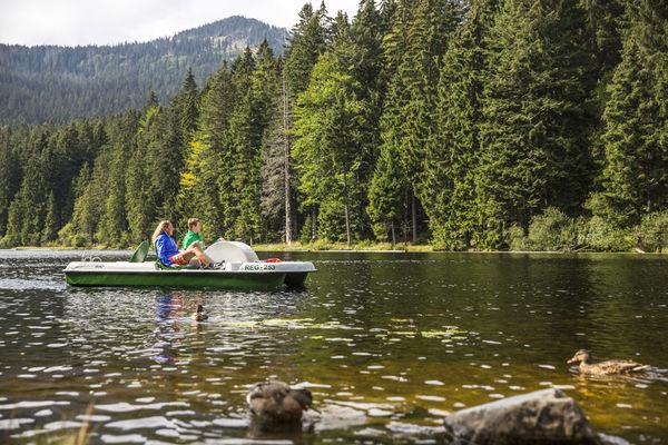 Tretbootfahren am Großen Arbersee, ein Spaß für Jung und Alt