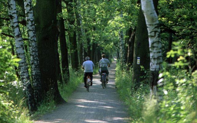 """3. Etappe """"Spreeradweg"""": Lübben - Beeskow"""
