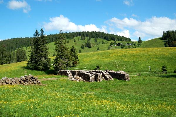Bernau - Hoch oberhalb des Krunkelbachs auf 1294 Metern liegt die Krunkelbachhütte inmitten von Wiesen und Weidfeldern. Foto: Heike Budig