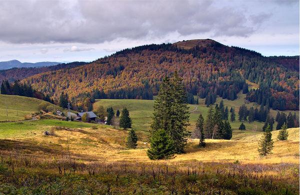 Oberhalb von Bernau im südlichen Schwarzwald: Krunkelbachhütte und Blick aufs 1415 m hohe Herzogenhorn