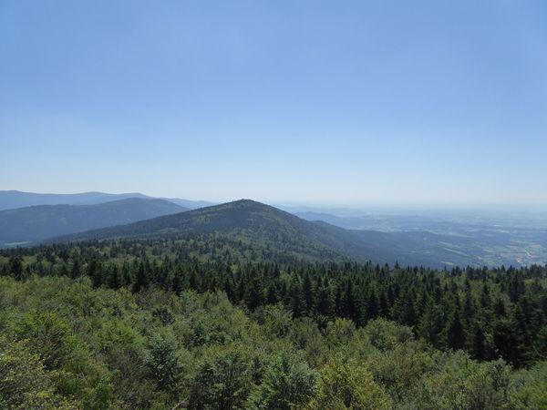 Ausblick vom Hirschenstein zum Rauhen Kulm