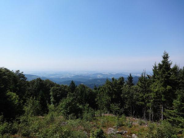 Ausblick vom Hirschenstein