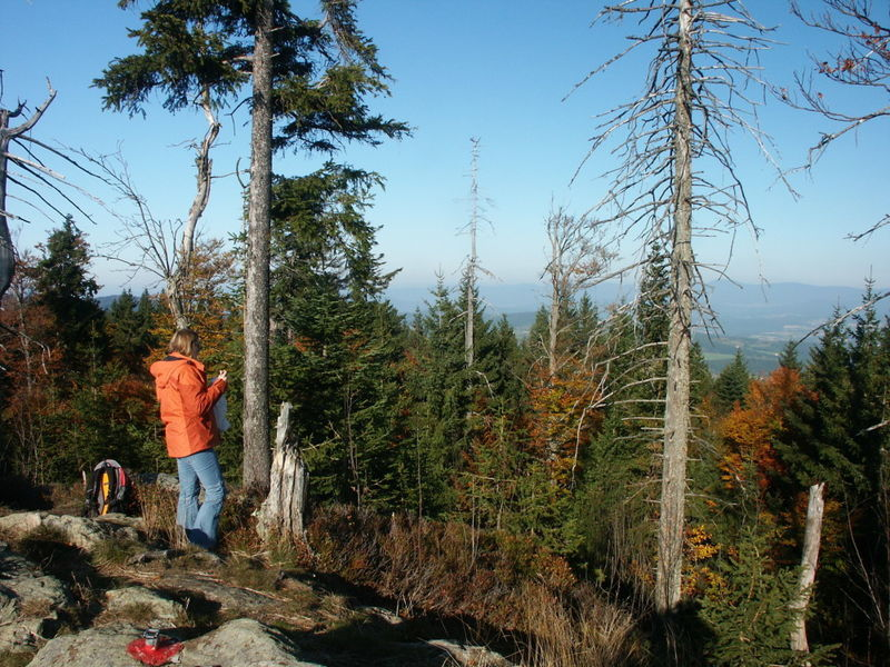 Wandererlebnis auf dem Rauhen Kulm bei Bernried im Bayerischen Wald