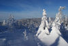 Winterlandschaft am Geisskopf