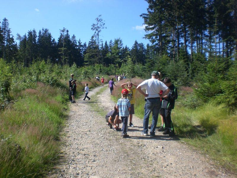 Wanderer auf einem Weg Rund um den Geisskopf bei Bischofsmais im Bayerischen Wald