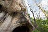 Sirgensteinhöhle bei Blaubeuren