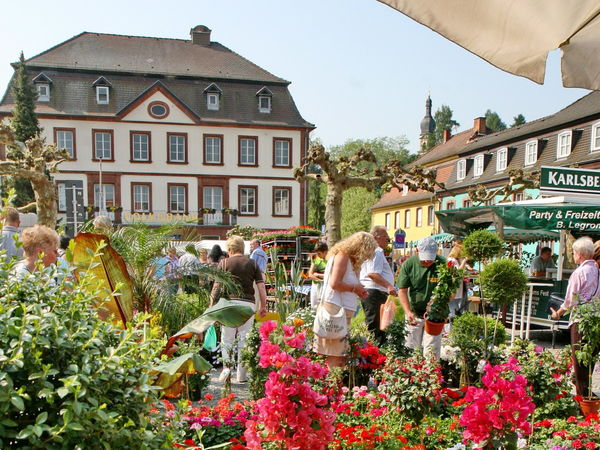 Blumenmarkt Blieskastel