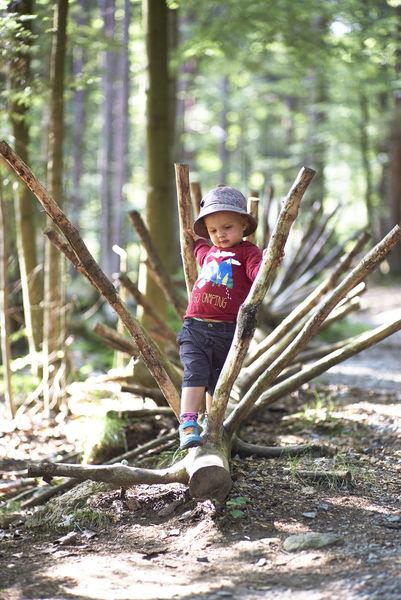 Die Ameisenstraße, ein 2,5 km langer Naturerlebnisweg mit 27 Stationen, bietet für Kinder viele Erlebnismöglichkeiten