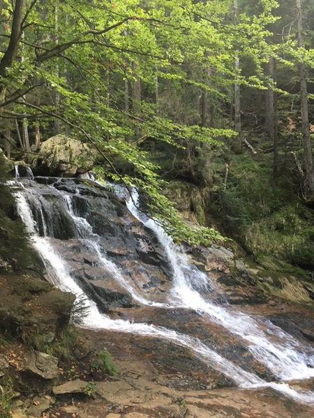 Naturschutzgebiet Riesloch mit den größten Wasserfällen des Bayerischen Waldes