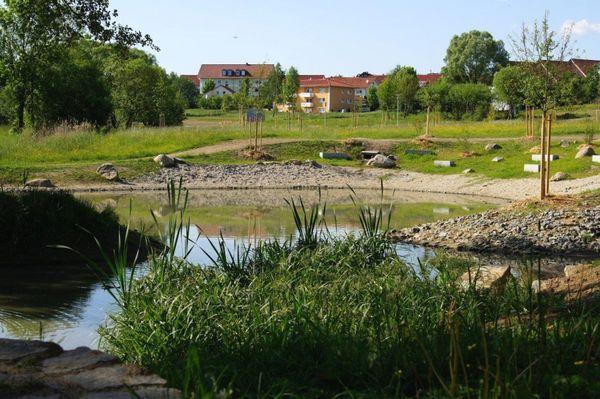 Naturlehrpfad im Europapark Bayern-Böhmen in Bogen