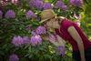 Blumen im Park Bomsdorf, Foto: Florian Läufer