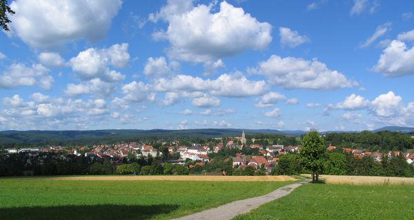 Blick vom Lindenbuck über Bonndorf