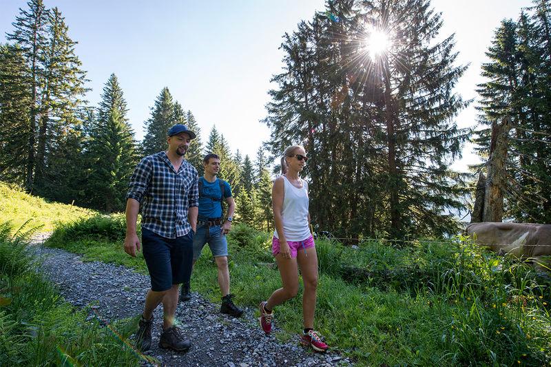 Helsana Trail