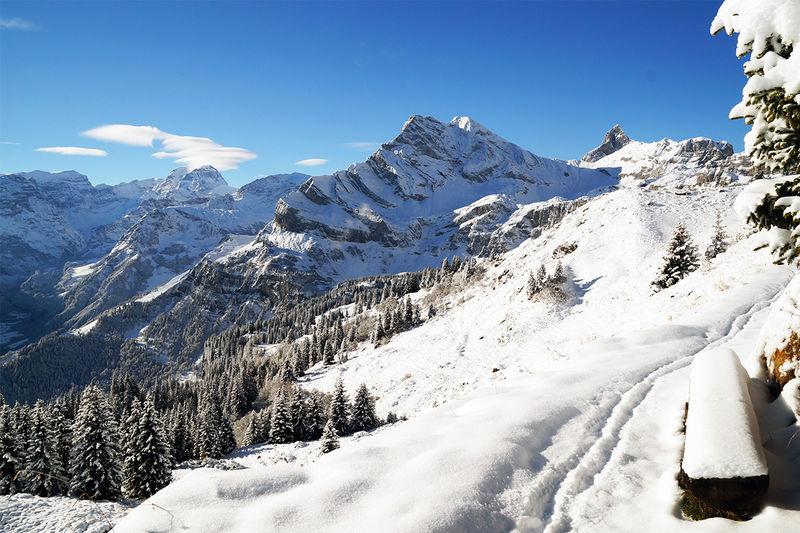 Panoramawanderung Seblengrat - Gumen