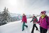 Gemütliches Winterwandern